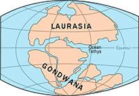 História da Nova Zelândia Gondwana