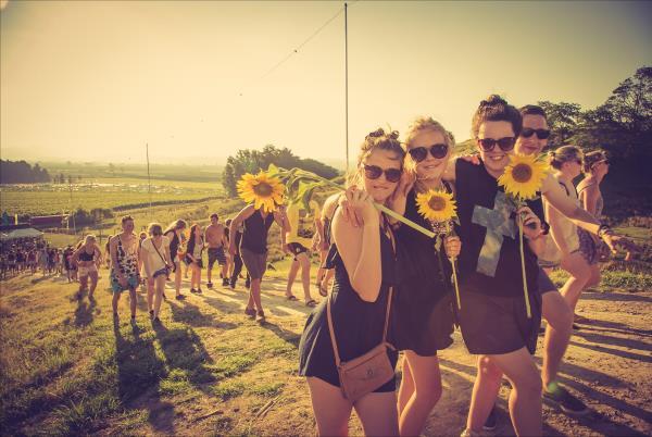 Festival Rhythm and Vines